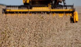 Empréstimos para produtores rurais somam R$ 92,1 bilhões na atual safra