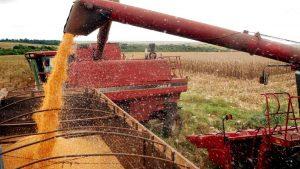 Governo prevê crescimento de 30% na safra de grãos em 10 anos