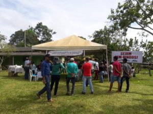 Machadinho: Dia de campo sobre Café Tecnificado reuniu especialistas da região e prefeitura municipal