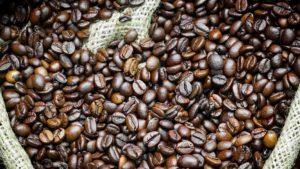 Exportação de café robusta cresce 4,7% em maio, aponta Cecafe
