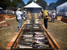 Festival do Tambaqui acontece em 10 cidades de Rondônia no dia 27