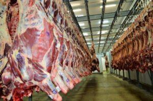 Exportações de alimentos em Rondônia mantêm-se estáveis em 2020